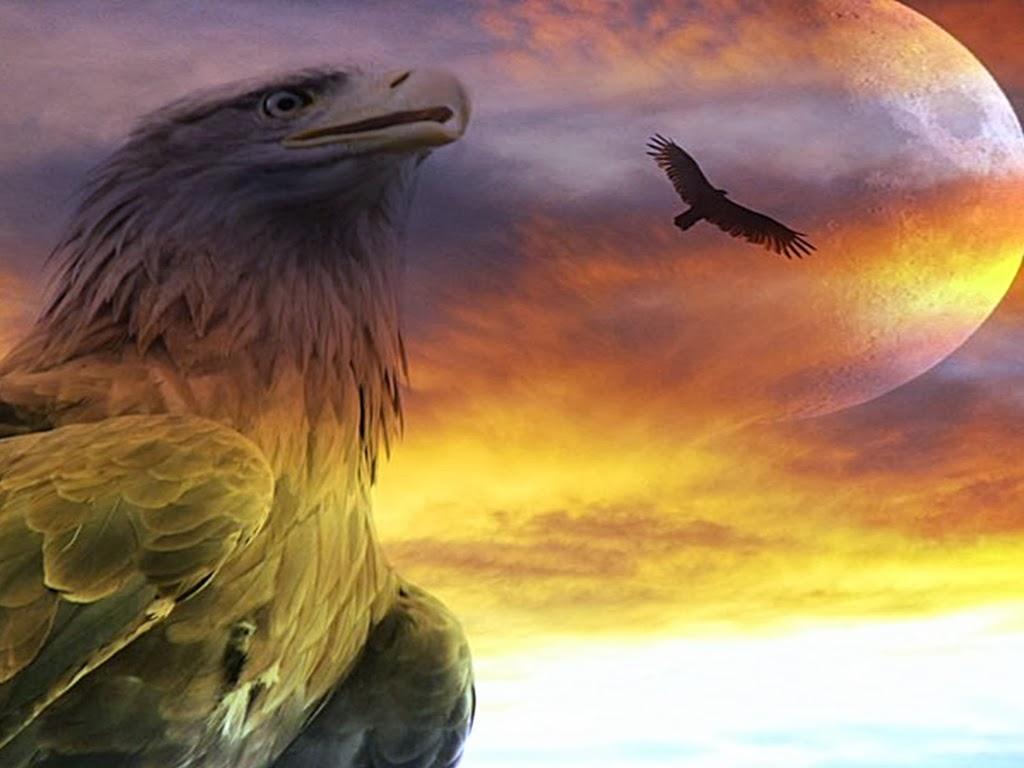 CAMBIAMENTO E RISURREZIONE – Il volo dell'aquila